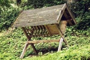 How to Build a Deer Feeder- Tips and Ideas