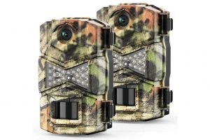 Best Deer Camera – Top 3 Choices & Reviews