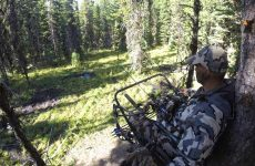 The Best Deer Stands Reviewed