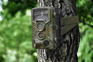 RainbowDay Deer Camera – Trail Camera Review – Top Choice Camera