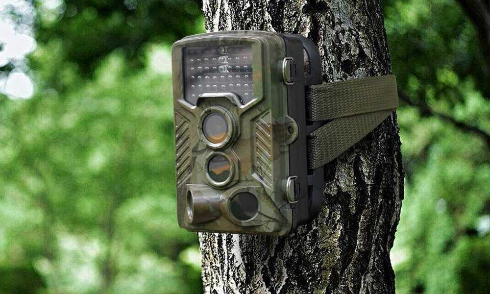 RainbowDay Deer Camera Trail Camera Review