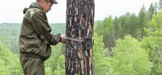 Bushnell Wireless Trail Camera Review – Review of the HD Aggressor