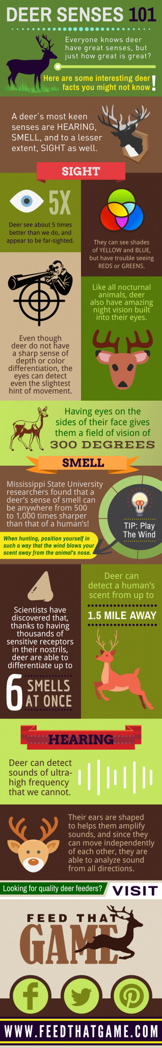 Deer Senses 101: how great are they?