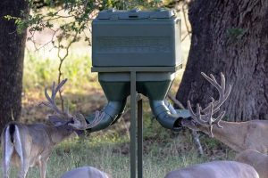 3 Best Texas Hunter Deer Feeders (Reviews, Pros & Cons)