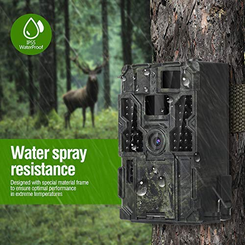 best deer camera