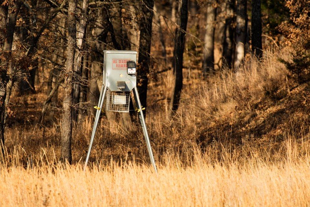 location of deer feeder