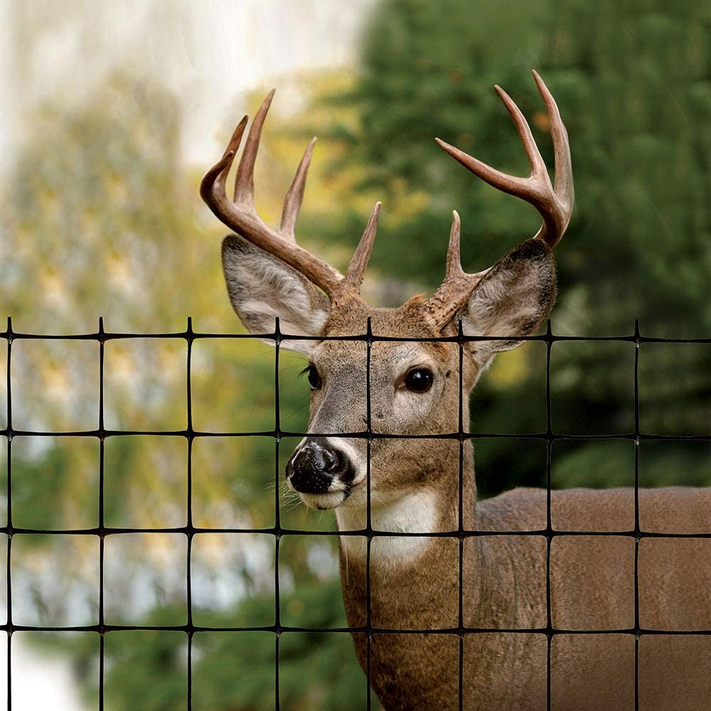 Tenax deer fence pro review and helpful information